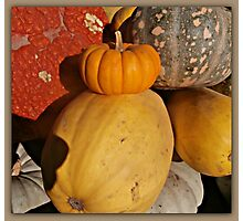 #harvest Photographic Print