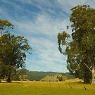 Farmscape #3, Warragul, Victoria. Australia. by johnrf