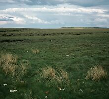 Wadsworth Moor West Yorkshire England 198406030058m by Fred Mitchell