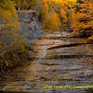 Autumn at the falls VIII by PJS15204