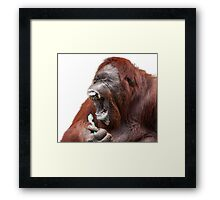 Orangutan Oral Hygiene 01 Framed Print