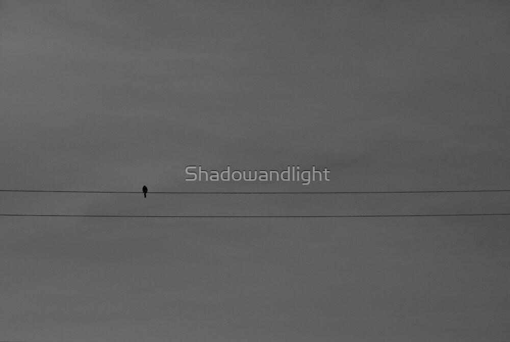 Bird on a wire by Shadowandlight