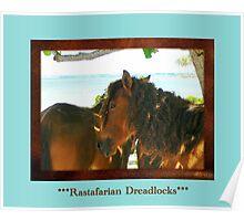 Rastafarian Dreadlocks Poster