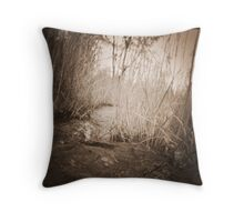 untitled~6 Throw Pillow