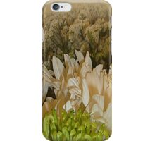 Spa Garden iPhone Case/Skin