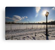 Central Light Canvas Print