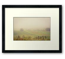Fog And Hay Bales Framed Print