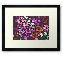 Floral Daydream  Framed Print