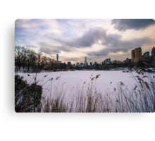 The Lake - Central Park Canvas Print