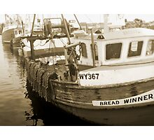 bread winners Photographic Print