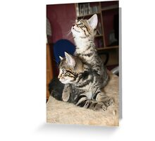 Baby Mia & Molly Greeting Card