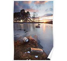 Last of the Snow - New Forest Poster