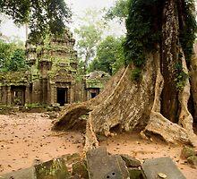 Ta Prohm Temple in Cambodia by Artur Bogacki