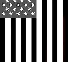 Greyscale American Flag  by rjwarr