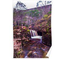 Mount Paris Dam and Cascade River, north-eastern Tasmania Poster