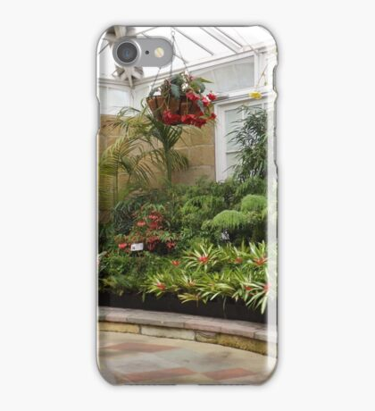 A Quiet Corner In The Conservatory iPhone Case/Skin