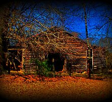 This Ole Barn by Lisa Taylor