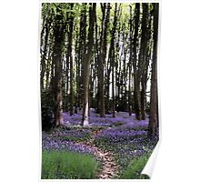 Lilac Bluebells Woodland Landscape Watercolour Scene Poster
