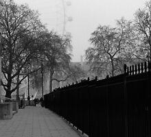 Eye through the mist by Keith Jones