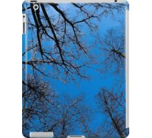 Blue heaven on earth iPad Case/Skin