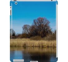 Divining beauty of spring iPad Case/Skin