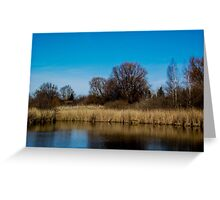 Divining beauty of spring Greeting Card
