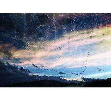 blue skys summer flys  Photographic Print