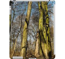 Green tall guardians  iPad Case/Skin