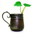 antique baby cup by Lynne Prestebak
