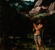 Moretto da Brescia - St. John the Baptist in the Wilderness by Adam Asar