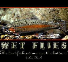 Wet Flies by Ryan Houston
