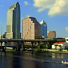 BEAUTIFUL TAMPA!!  by HelmD
