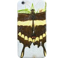 Brown and Yellow Butterfly on Plant iPhone Case/Skin