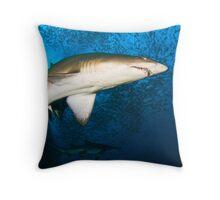 Grey Nurse Sharks Throw Pillow