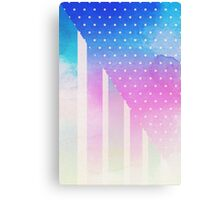 Citizen Of The Sky Canvas Print
