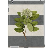 botanical stripes 5 iPad Case/Skin