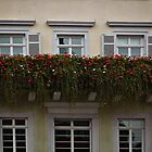 Detail Esslingen Townhall, Germany by Bine