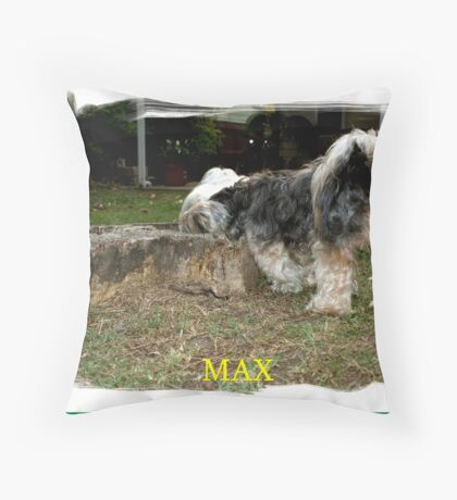 MAX (WHAT IS IN HERE)? Throw Pillow
