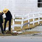 Mending Fences  by Gayle Dolinger