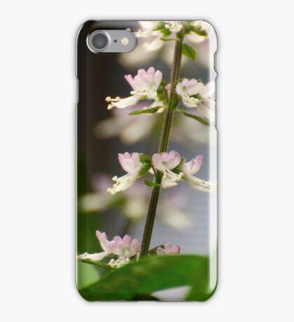 Basil Blossom iPhone Case/Skin