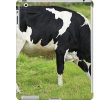 Holstein Cow Grazing iPad Case/Skin