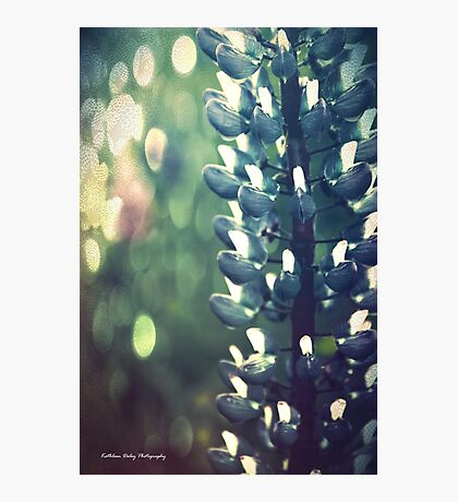 Dreams of Summer Photographic Print
