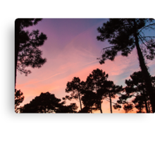 Sunset - Clouds, wind and trees #3 Canvas Print