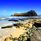 Lion Rock South Coast Track Southern Tasmania by Mark Ashton