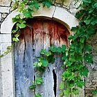 knock knock by Raymond Capozzi
