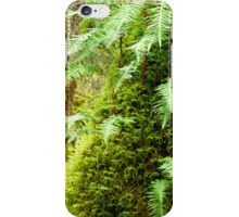 Early Spring in the Rain Forest   iPhone Case/Skin