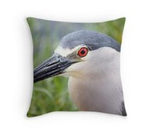 Portrait of a Black Crowned Night Heron Throw Pillow