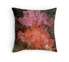 Red & Purple Throw Pillow