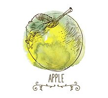fresh useful eco-friendly apple by OlgaBerlet