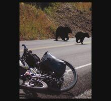 Black bear. by Rune Monstad